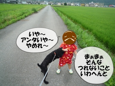 柳沢シンゴP1090243