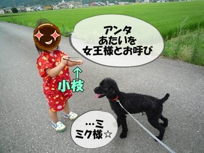 柳沢シンゴP1090255