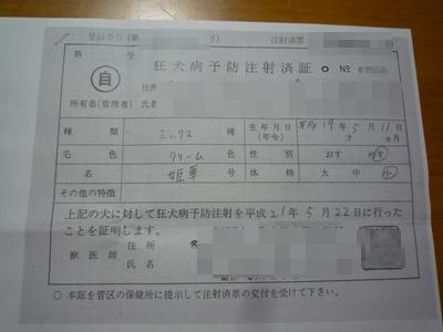 姫華登録P1090319