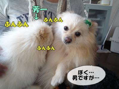 おーじろうP1110346