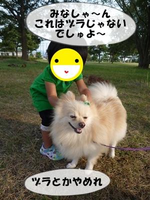 おーちゃんP1110372