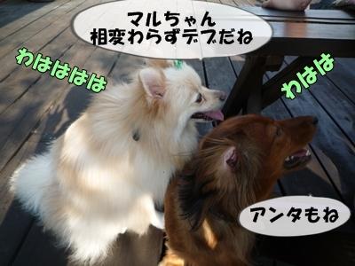 おーじろうP1110349