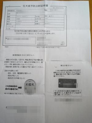愛美P1130221
