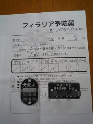 ラブP1130218