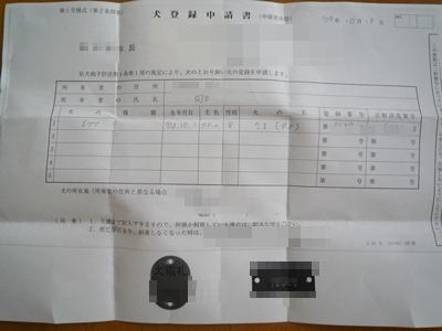 たまP1130217