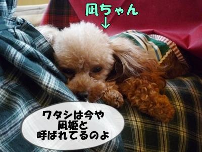 凪ちゃんP1120962