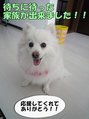 むにょこP1130817