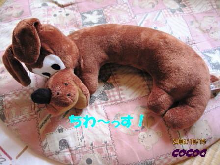 IMG_0499-cocoa.jpg