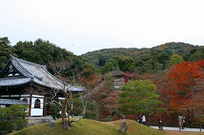 IMGkyoto_0557.jpg