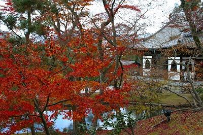 IMGkyoto_0560.jpg