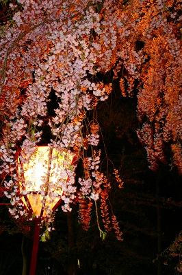 touhoku_0739.jpg
