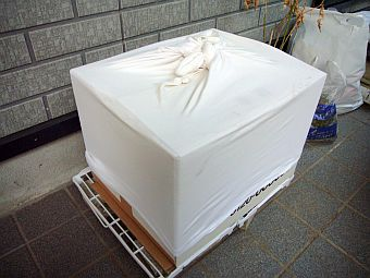 P1050710-1.jpg