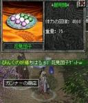 20060408花見団子