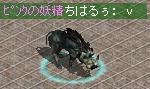 20060504猪