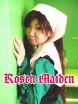 rosen1.png