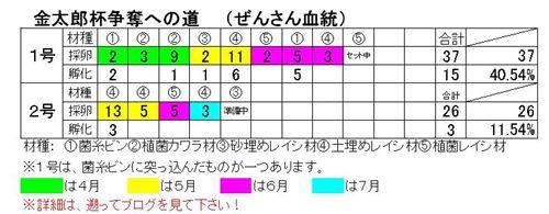モセリ7.8_R