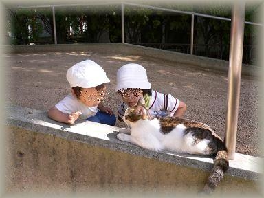 わ~!ネコちゃんだー!