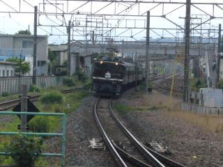 P1100938.jpg