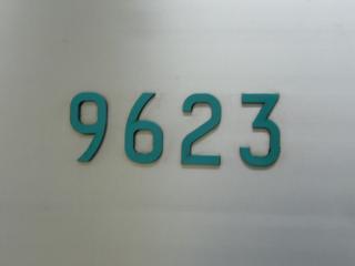 P1110707.jpg