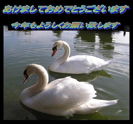 20050101180553.jpg