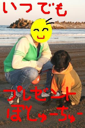 コピー ~ コピー ~ IMG_0922