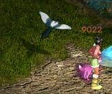 祝福鳥守護牌 2