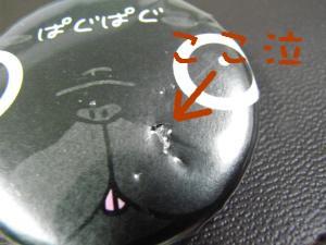 RIMG0917_convert_20080916223112.jpg