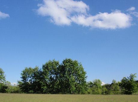 20080630-3.jpg