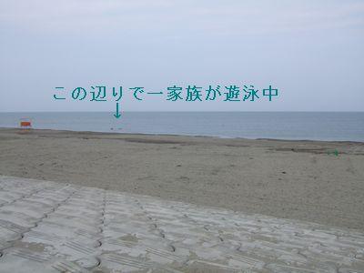 02-03.jpg