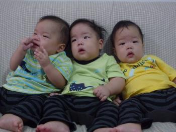 三つ子(6ヶ月)