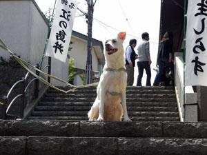 途中の階段で