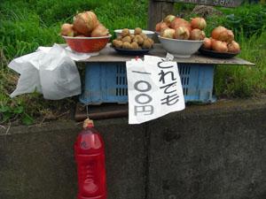 野菜100円