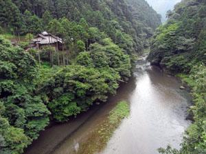 アースカフェ吊り橋からの景色