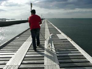 桟橋歩く2人