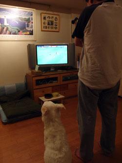 サッカー観戦1