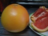 002_グレープフルーツ