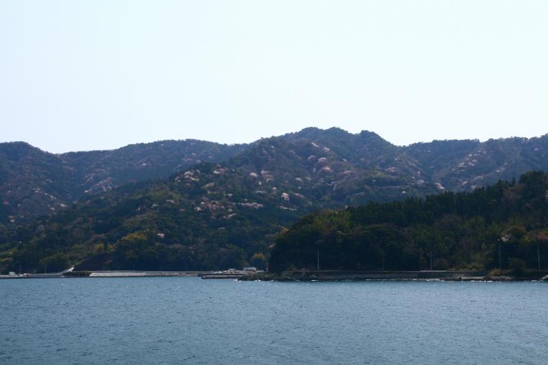 s-桜津久見臼杵20080329 093