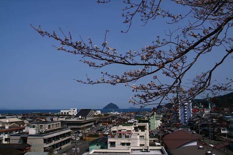 s-桜津久見臼杵20080329 102