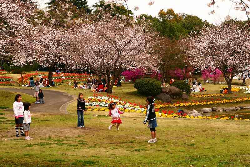 s-桜別府20080402 037