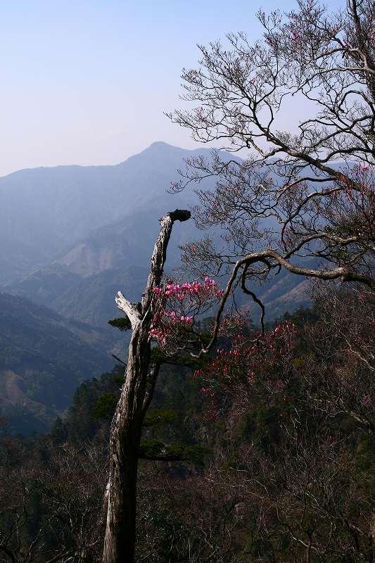 s-夏木山20080426 196