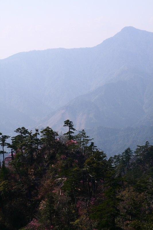 s-夏木山20080426 214
