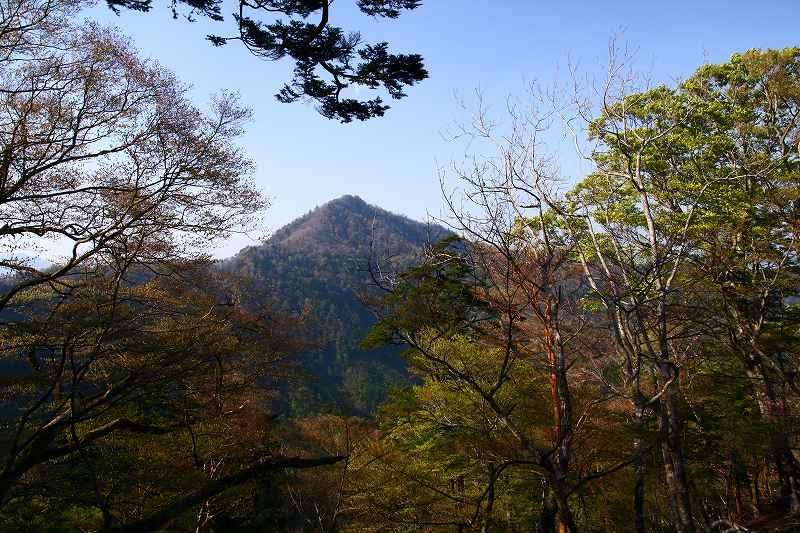 s-夏木山20080426 284