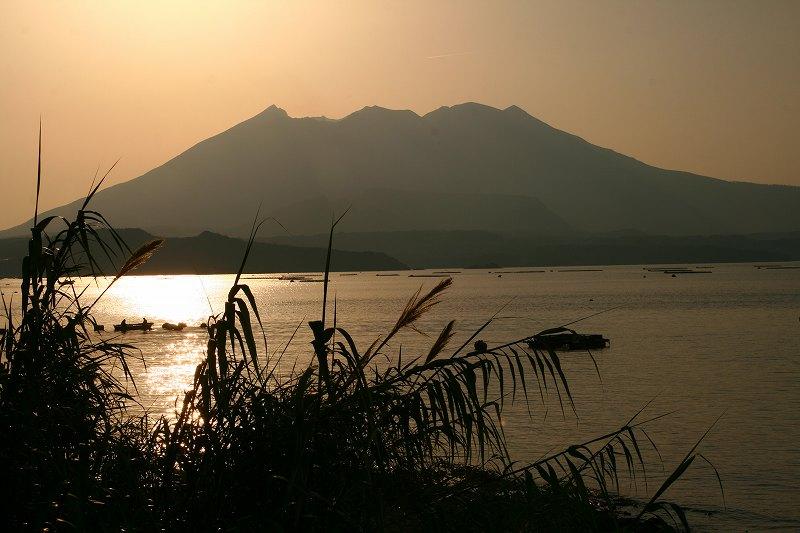 s-桜島霧島20080503 308