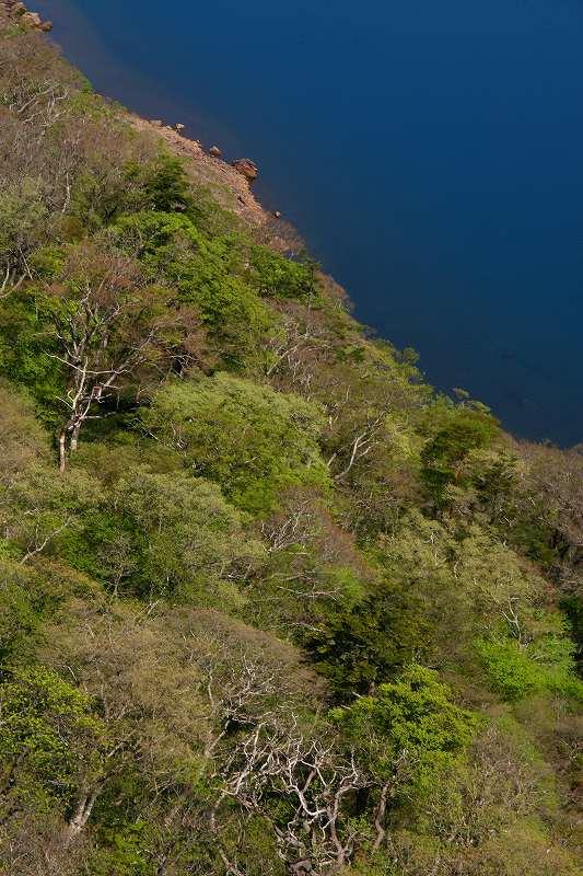 s-桜島霧島20080503 239