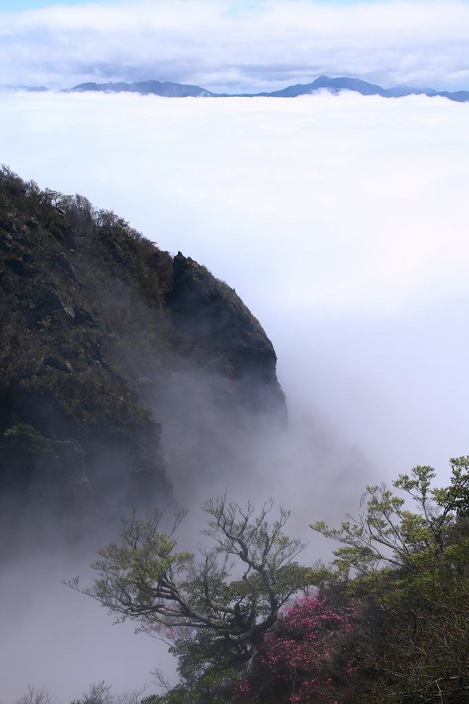 s-傾山黒仁田20080511 143