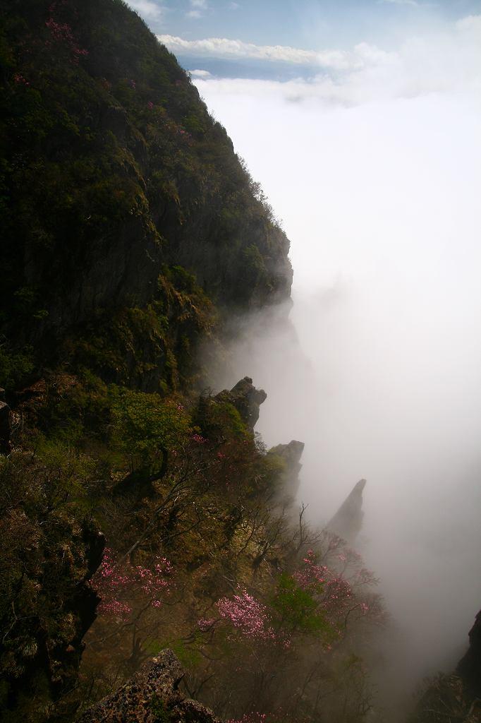 s-傾山黒仁田20080511 286