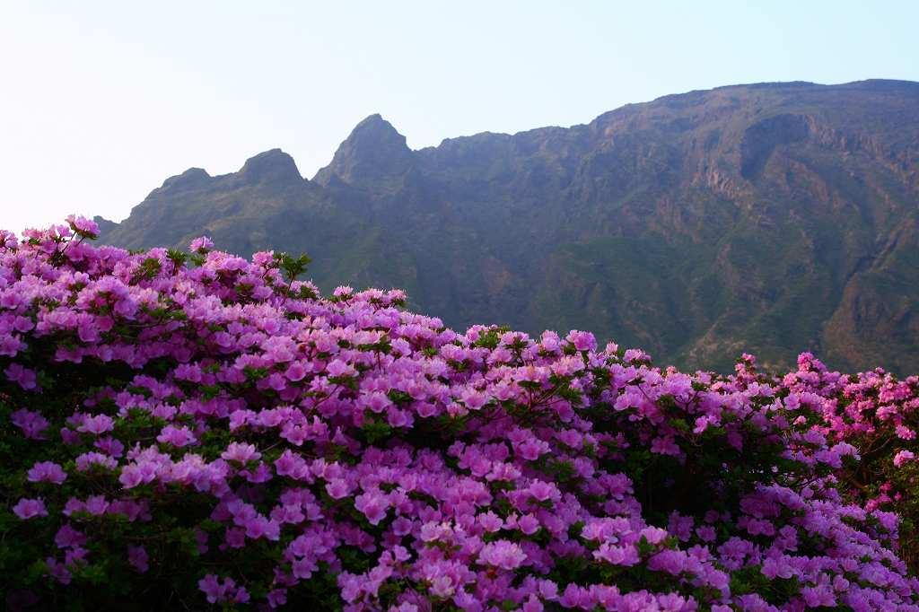 s-阿蘇仙酔狭山上20080517 058