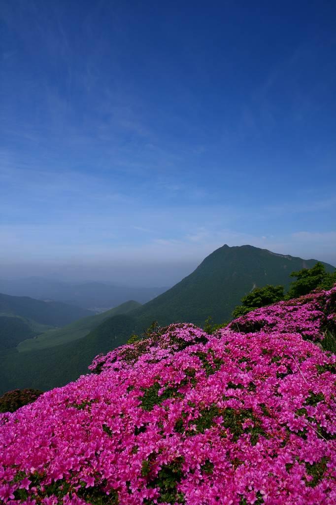 s-鶴見山20080601 044