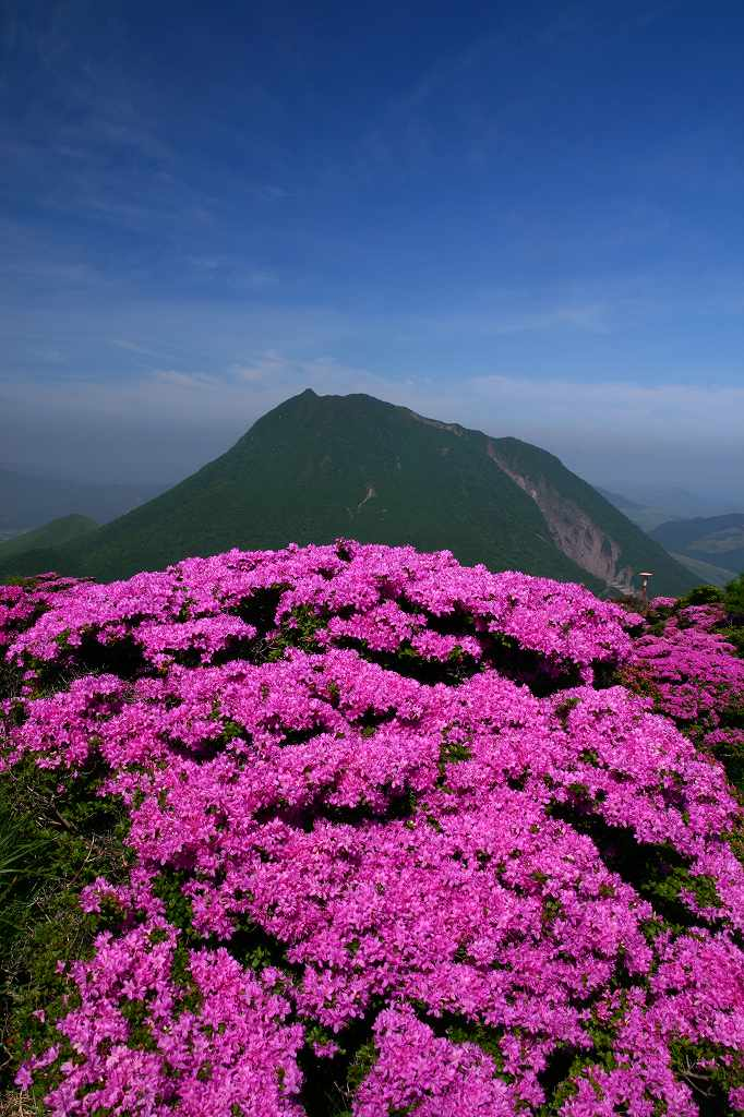 s-鶴見山20080601 041