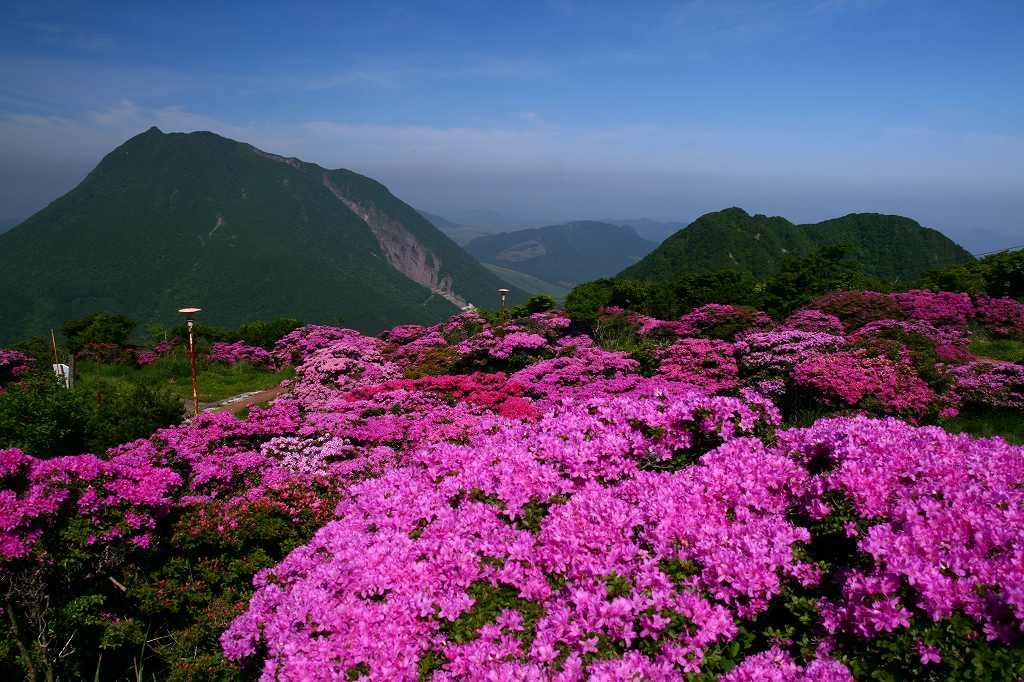 s-鶴見山20080601 026